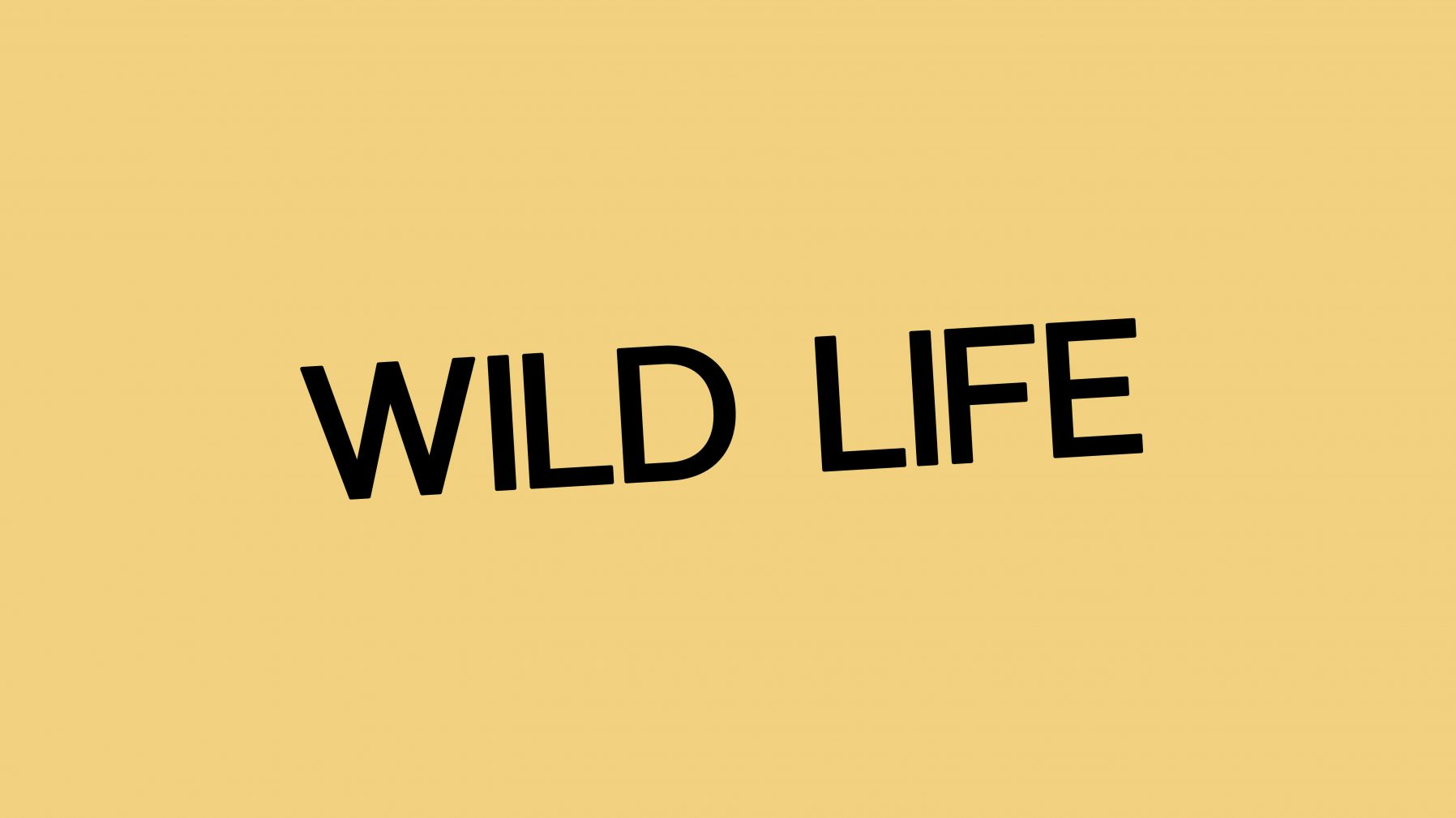 JAC&_Wild Life Cafe and Bakery_Logo Design